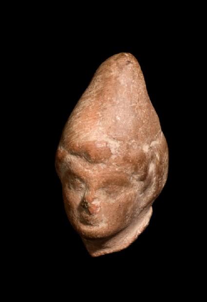 Model of a head