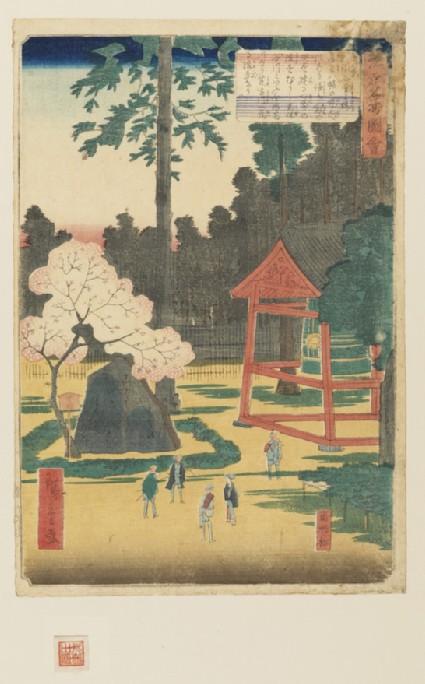 The Konnō Cherry Tree in Shibuya