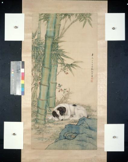 Dog beneath bamboo