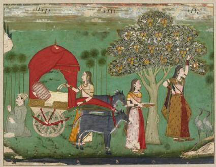 A lady by a mango tree