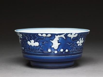 Bowl with fish and waterweeds