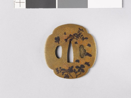 Lenticular and mokkō-shaped tsuba with asters and a cricket