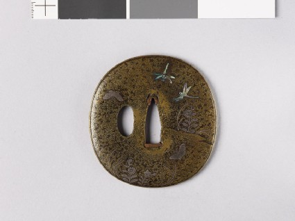 Lenticular tsuba with Platycodon plants, butterflies, and dragonflies