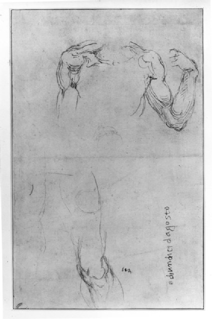 Recto: Studies of Anatomy<br />Verso: Studies for a Christ crucified, and a Study of the right Knee of a Man