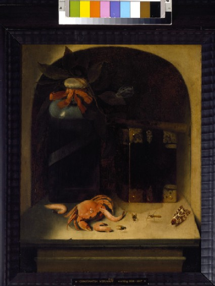 Still Life with a Crab