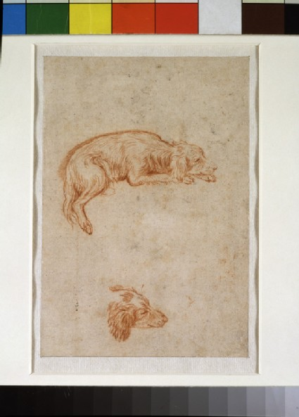 Recto: Two studies of a spaniel<br />Verso: The lower half of a draped figure kneeling by a key