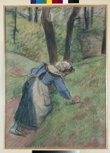Female peasant picking grass