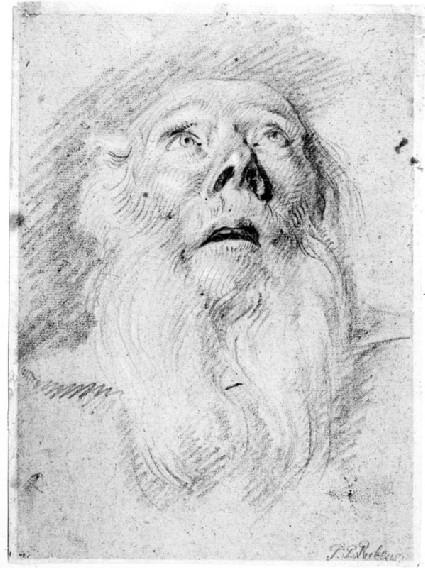 Head of a bearded man, seen from below