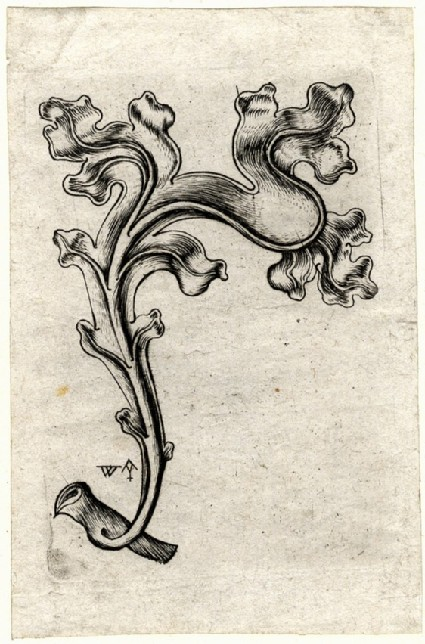 A gothic leaf, turned to the right