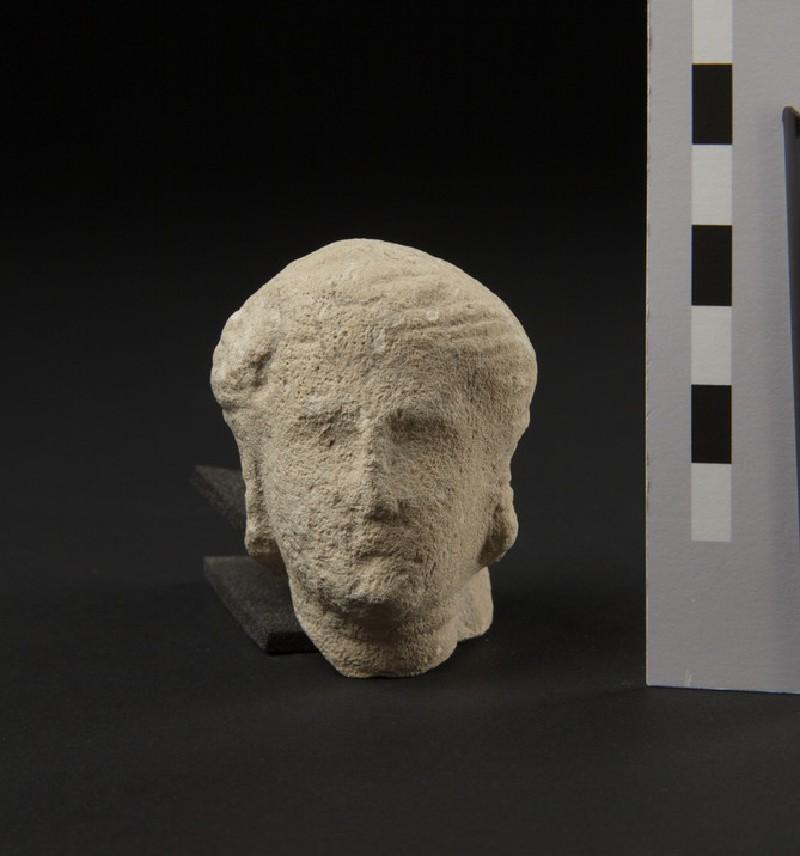 Head of female with wavy hair (AN1888.1262)