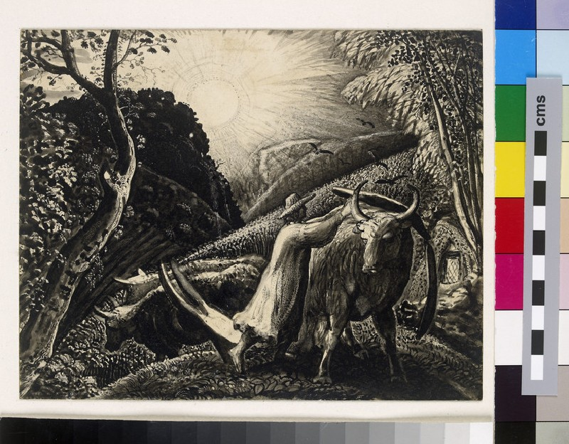 A Young Man Yoking an Ox (WA1940.63)