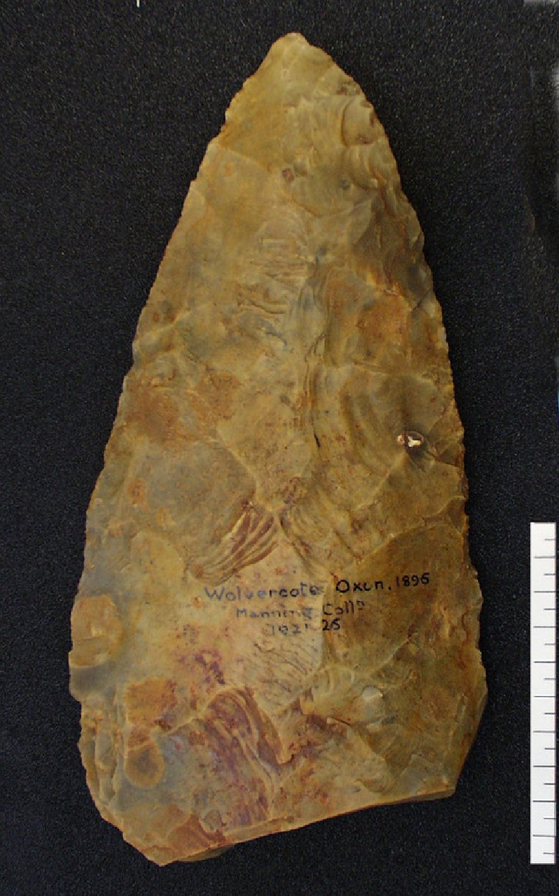 Acheulean handaxe with a plano-convex form